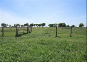 1001 County Road 433 None, Thrall, TX 76578