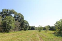 Tract 2 CR 119, Caldwell, TX, 77836