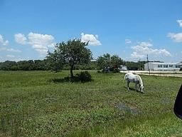 922 highway 183 hwy, refugio, TX 78377