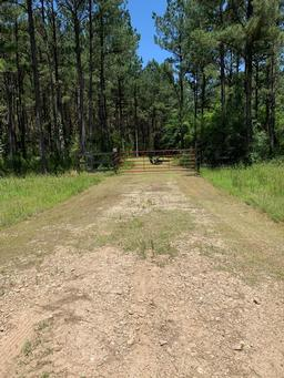 TBD Timber Ranch Road, Apple Springs TX 75926