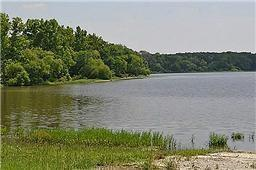 1121 CRYSTAL LAKE Drive, Wills Point TX 75169